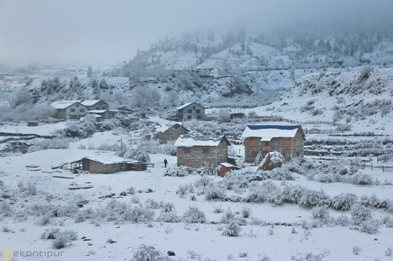 Snowfall in Karnali affects normal life