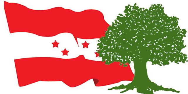 Nepali Congress' debacle in election – who to blame, what are the reasons?